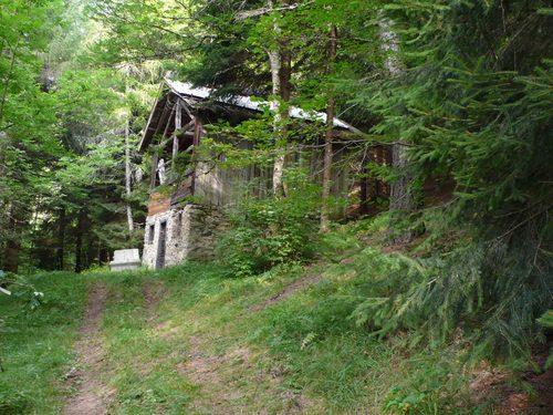 un fienile in un bosco di montagna