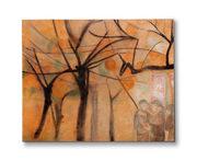 alberi di cachi