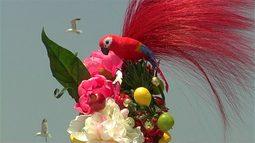 pappagallo sopra fiori colorati