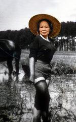 fotomontaggio del corpo di Silvana Mangano con il volto di una donna asiatica